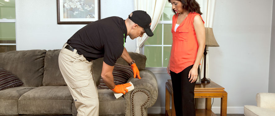Olmos Park, TX carpet upholstery cleaning